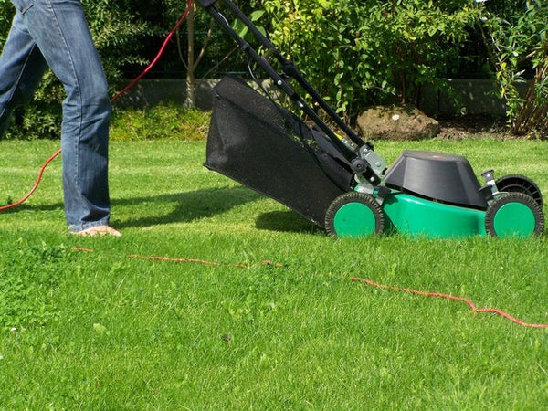 Electric Lawn Mower cutting grass in a yard