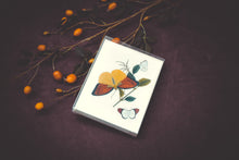 Load image into Gallery viewer, Butterfly Card Set - Collection #1
