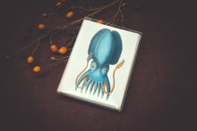 Load image into Gallery viewer, Cephalopod Card Set - Collection #1