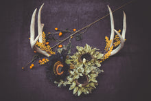 Load image into Gallery viewer, Antler Decor