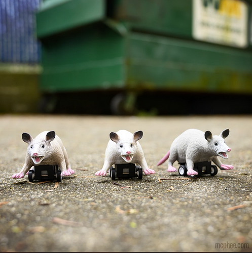 Three toy possums on a pull back and go toy chassis. The backdrop is a green dumpster.