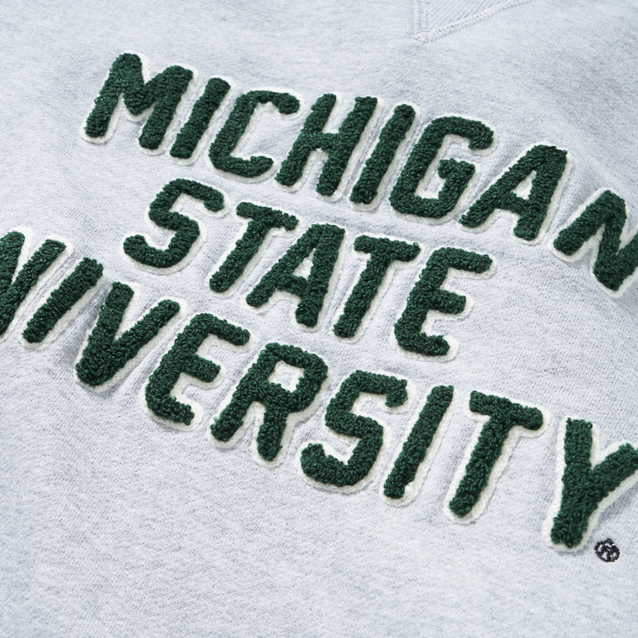 Michigan State School Sweatshirt