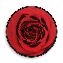 Load image into Gallery viewer, Glittered Rose