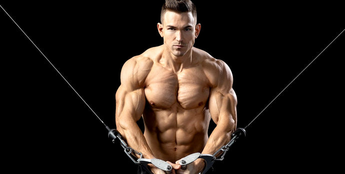Best Chest Workouts: The Best Exercises for a Massive Chest
