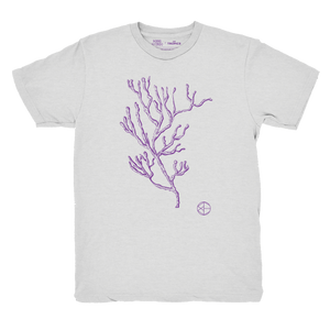 Camiseta Protect Our Oceans - Bomba Estéreo X The Tropics