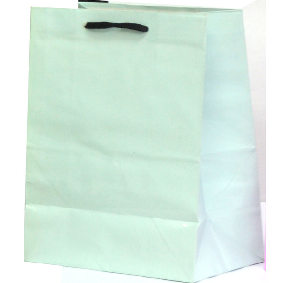 Medium Solid Color Gift Bags