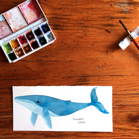 Original whale watercolour art