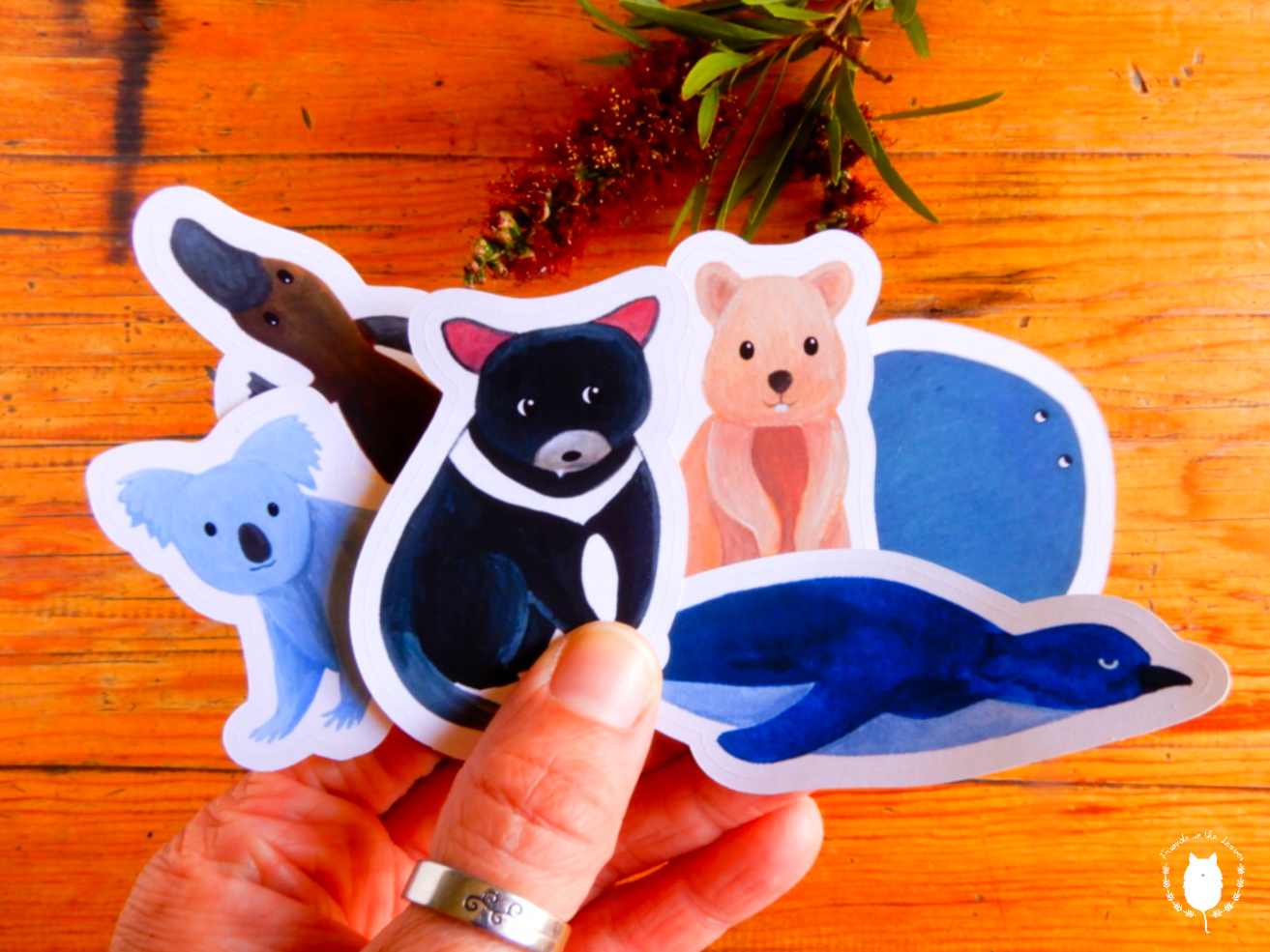 Australian animals (set 1) sticker pack