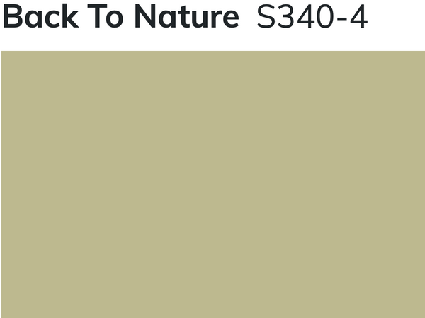 Back to Nature Paint Color