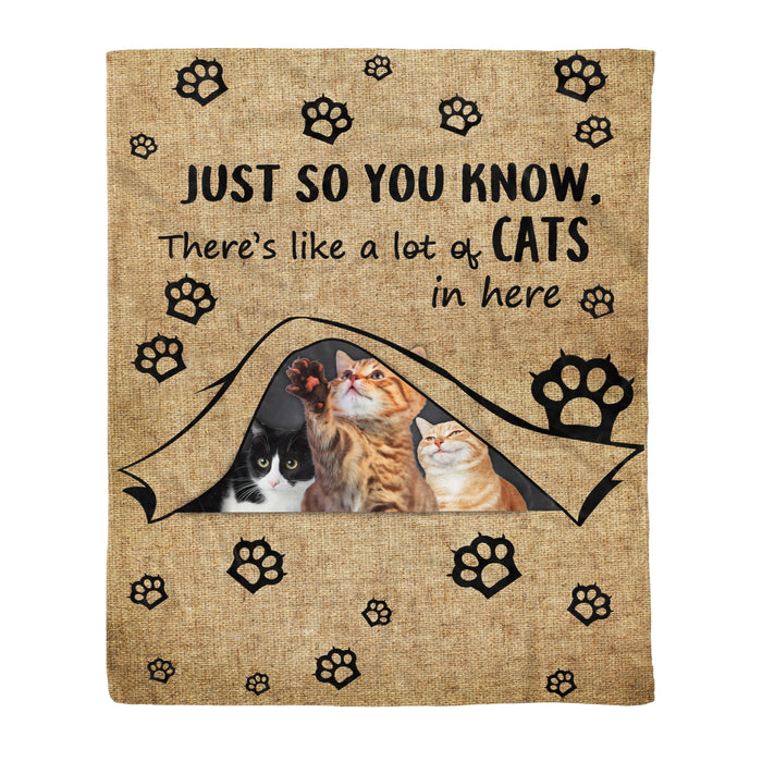 Fleece Blanket Mother's day Father's day unique gift ideas for mom & dad from daughter & son kids, meaningful birthday presents -  Cats In Here Fleece Blanket Cat lover gift pet gift birthday present