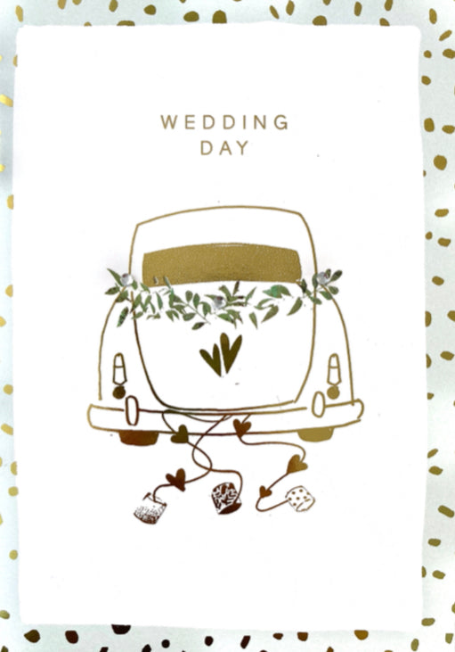 Wedding - Cans Dangling on a Car