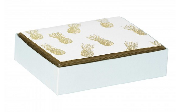 Pineapple Boxed Notes