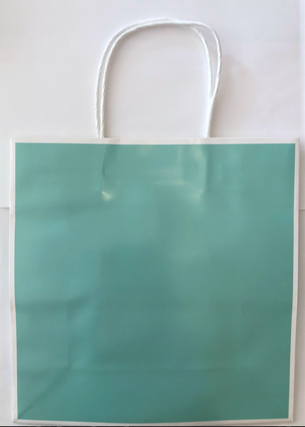 Tiffany Blue Gift Bag - MD