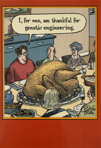Thanksgiving - Thankful