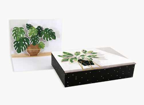 Boxed Card - Potted Plants (Pop up)