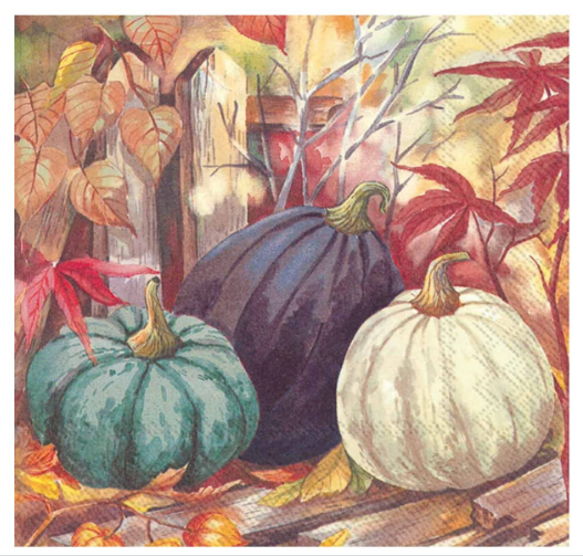 IHR Lunch Napkin - Pumpkin Garden