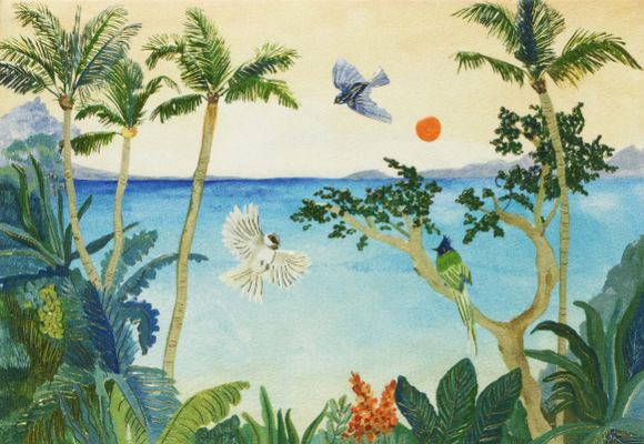 Peter Pauper Press Boxed Notecards - Tropical Paradise