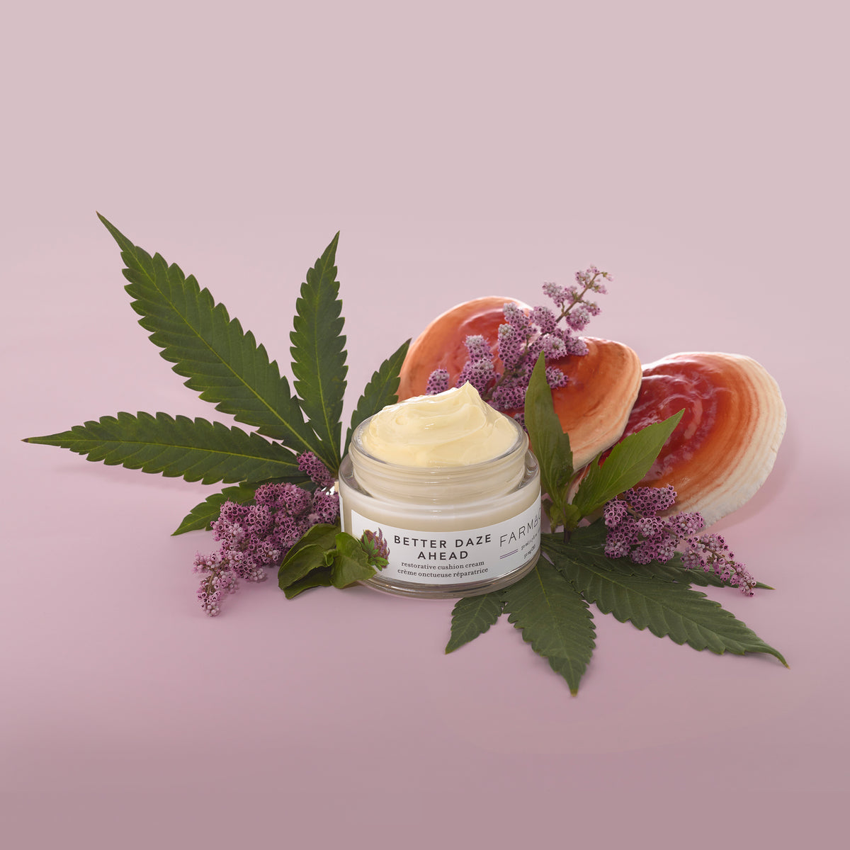 Better Daze Ahead moisturizer with hemp leaves, reishi mushrooms and holy basil