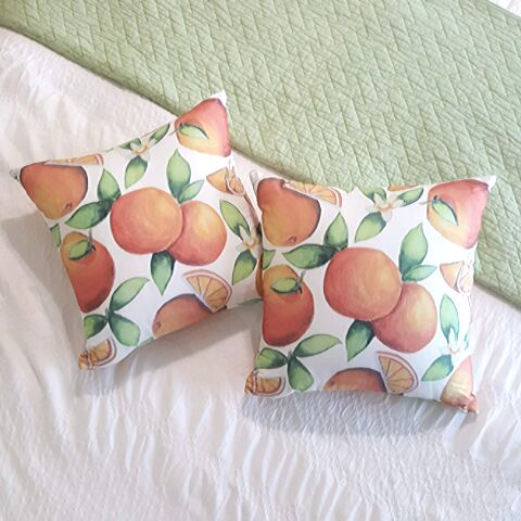 craving citrus orange pillows