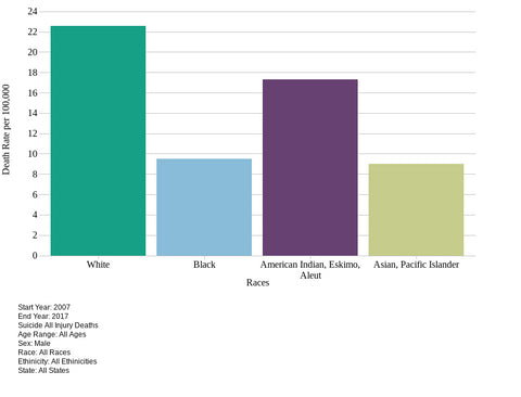 Suicide statistics in America by ethnicity (2007-2017)