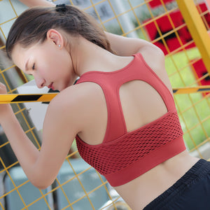 Professional women sports bras