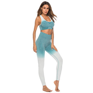 Seamless High Waist Quick-Drying Breathable 2 Piece Set-Sunshine's Boutique & Gifts