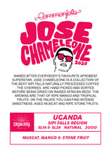 Load image into Gallery viewer, Jose Chameleone