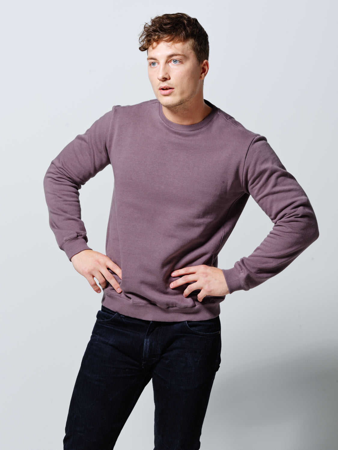 THE SWEATSHIRT PALE LILAC