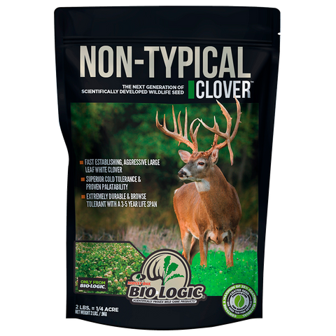 Perennial deer food plot seed  drought tolerant clover