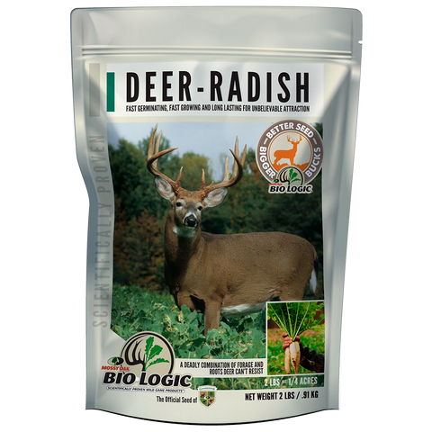 Deer radish food plot seed