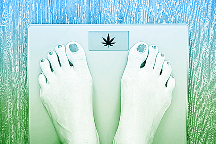 Can Cannabis Really Help You Lose Weight?