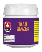 Trailblazer - Flicker Buds