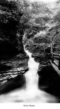 Load image into Gallery viewer, Souvenir of Watkins Glen, New York