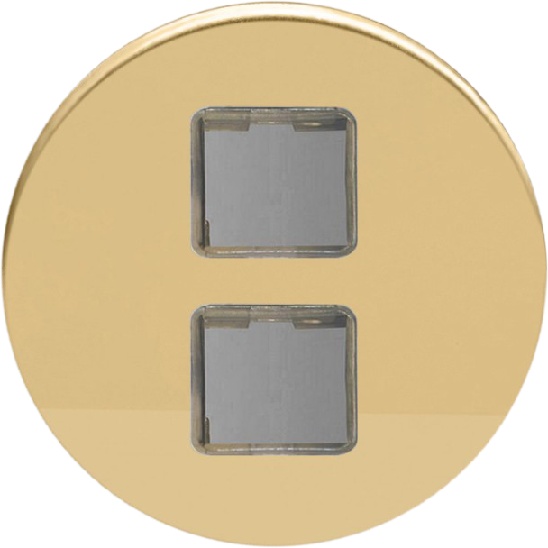 Double USB - Polished Brass