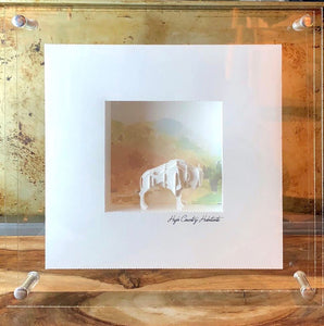 "Shadowbox Dioramas ""Misty Morning"" Americas Buffalo"