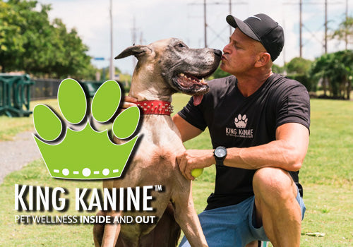 King Kanine CBD for Pets