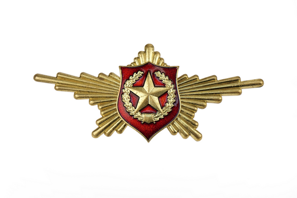 USSR Symbol of Land Forces Badge