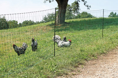 Poulnet Chicken Fencing (Non-Electric) Green