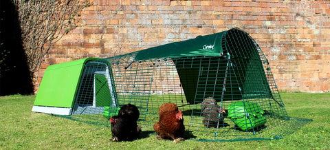 Eglu Go Chicken Coop