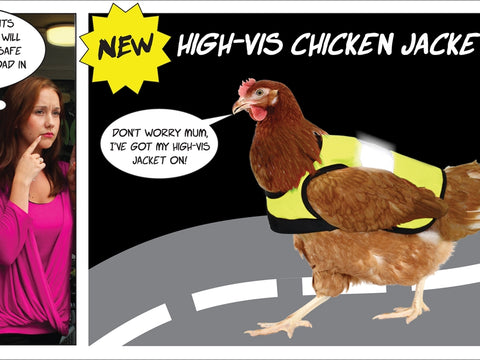 Chickens are save wearing Omlet Hi-vis Chicken Jackets when out and about