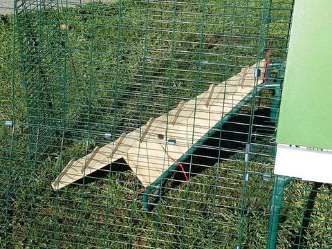 Silkie ramp for Eglu Go UP or Cube