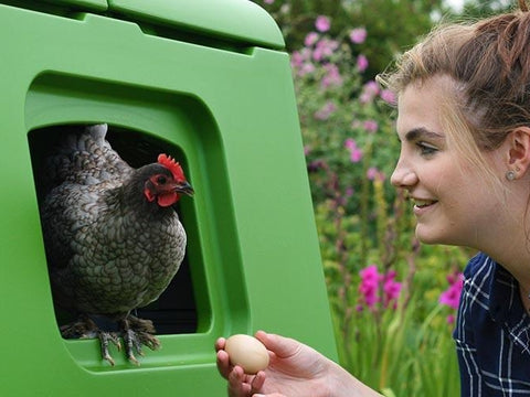 Eglu Cube - Large Chicken Coop