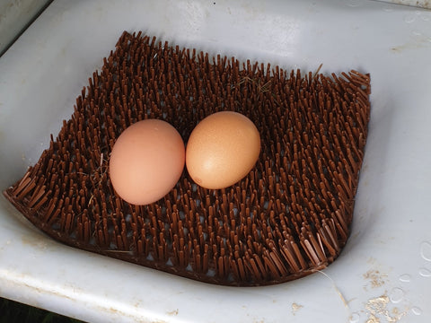 Two perfect eggs laid on chicken astroturf in Eglu Go Chicken Coop nest bowl