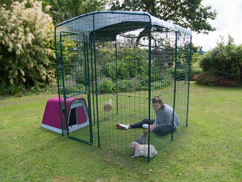 Eglu Hutch + Connection Kit for Outdoor Rabbit Run