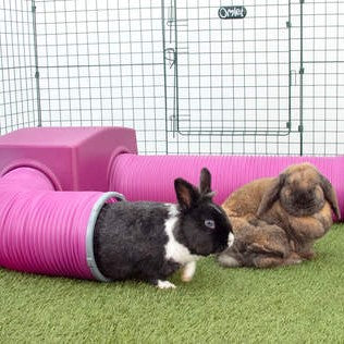 Rabbit Play Tunnels