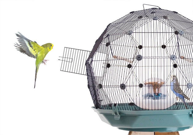 Geo Bird Cage for Budgies, Finches and Canaries