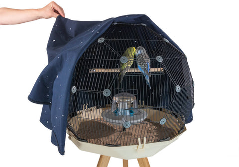 Geo Bird Cage - Night Cover