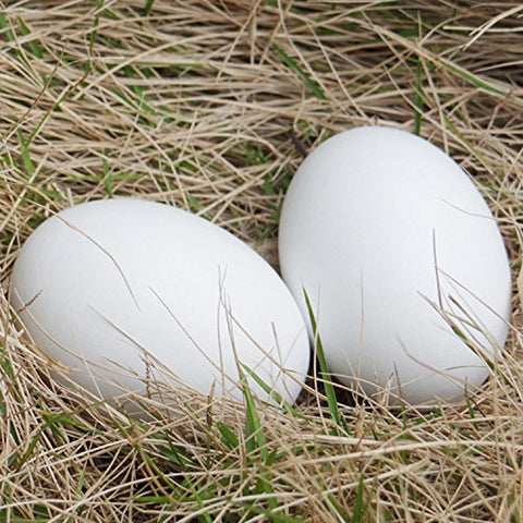 Wooden Nest Eggs (A Pair)