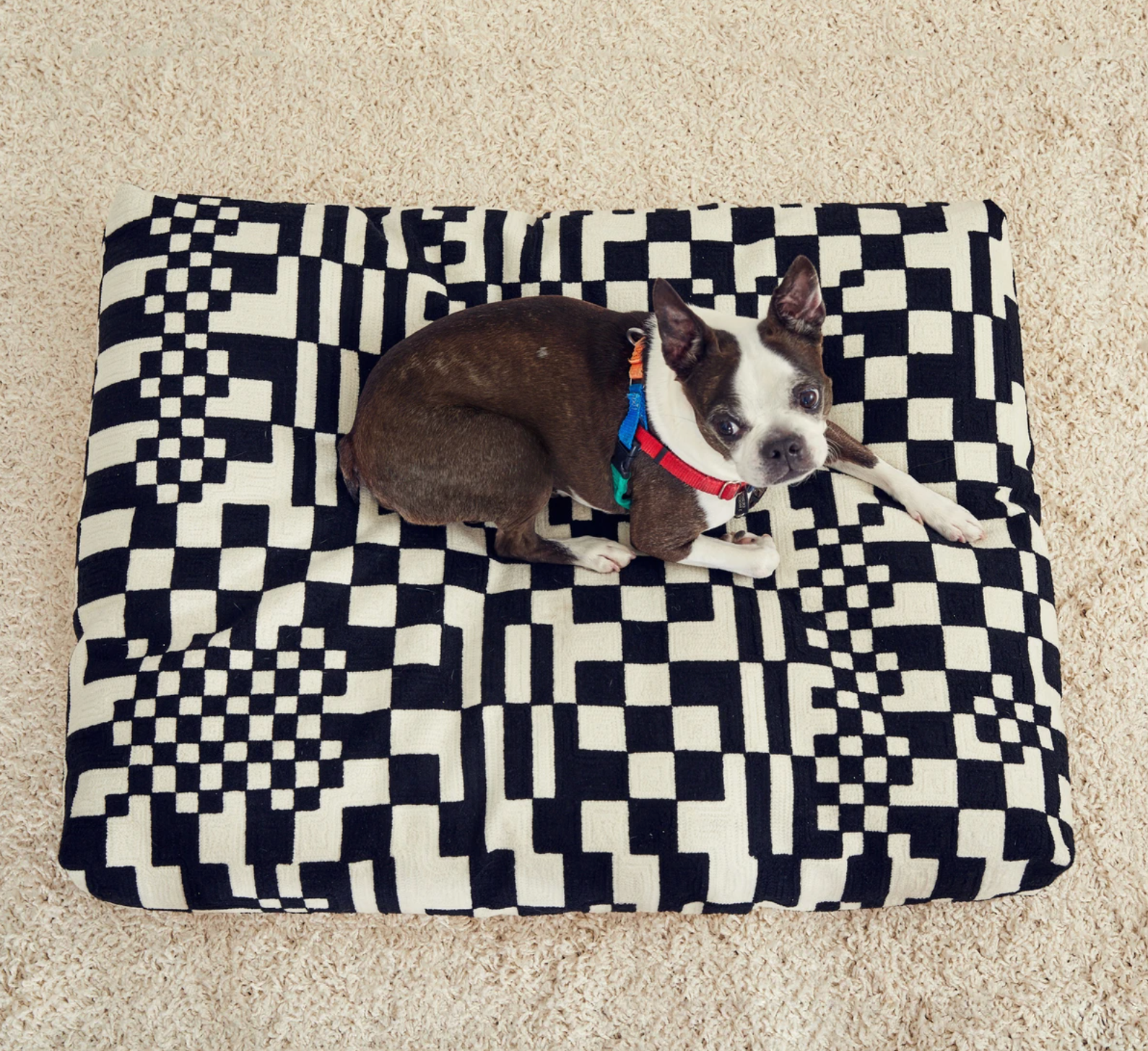 Embroidered Dog Beds