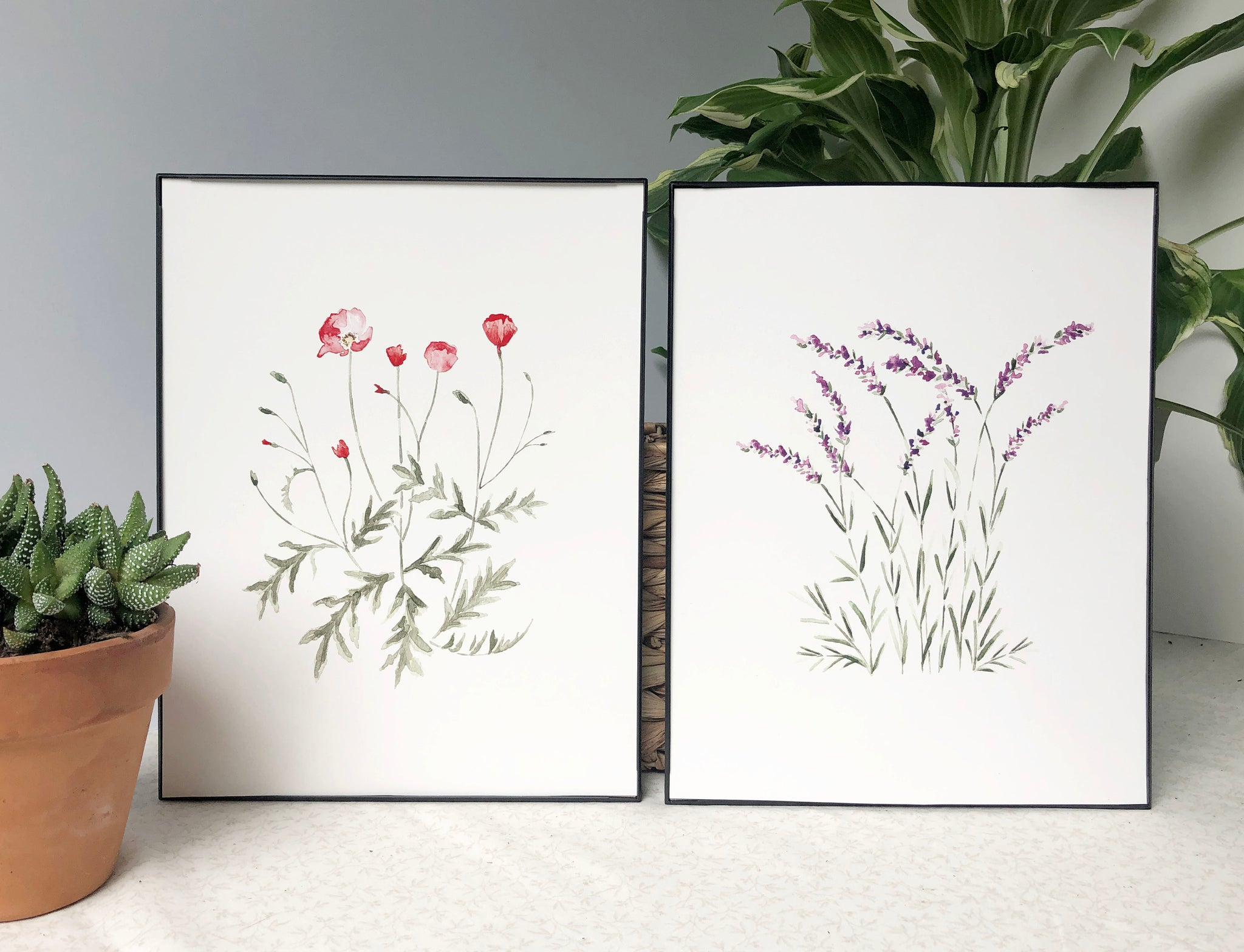 Lavender and Poppy Prints
